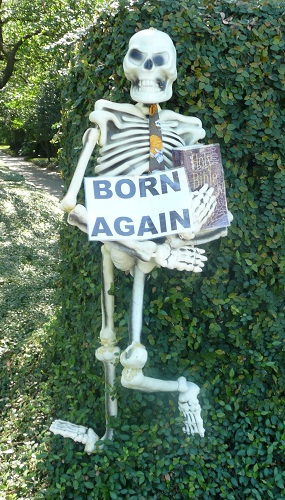 Skeltons Born Again